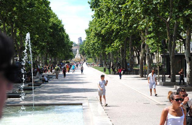 Visite Comme un arbre dans la ville