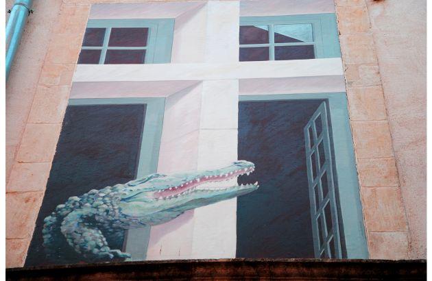Visite Nîmes et le crocodile