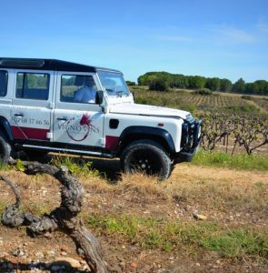 VIGNO'VINS - Wine tour